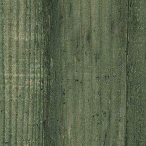 677 Вяз вуд Root